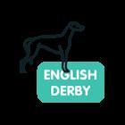 english-derby-greyhound-betting