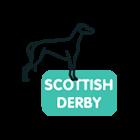 scottish-derby-greyhound-betting